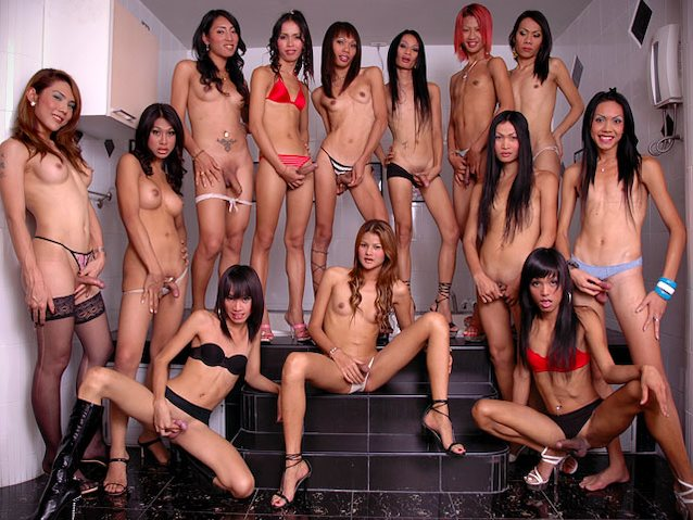 Group Support Transsexual With Free Big Cock Shemale